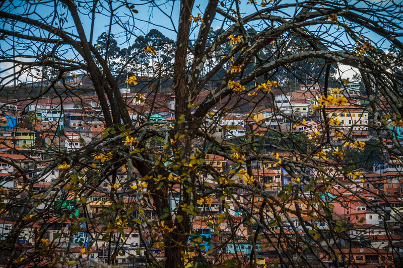 Artistic colorful capture.
