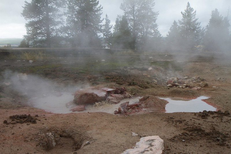 02_Yellowstone National Park_Montana_Wyoming-24.jpg