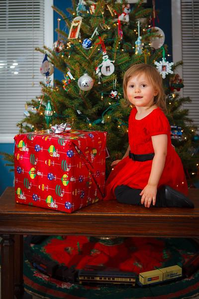 Ford Family Christmas 2015-8.jpg