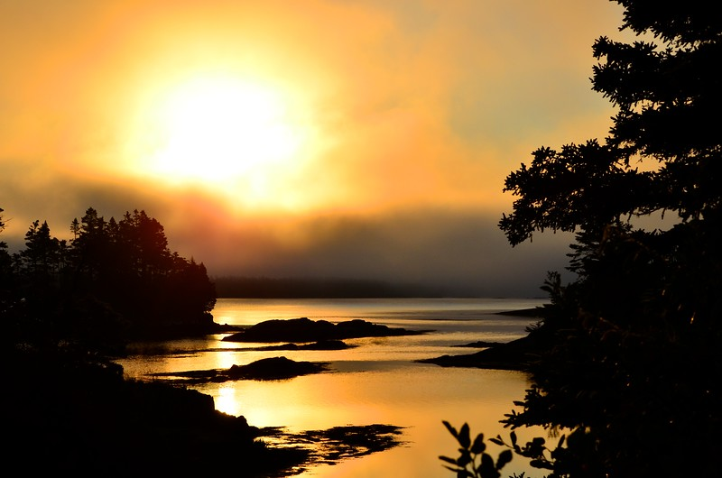 Fog Sunrise NS.jpg