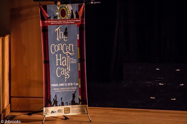 Arts10566 The Concert Hall Cats