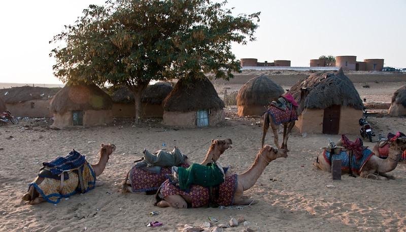 POW Day 5-_DSC3648- Jaisalmer.jpg