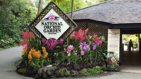 2017 Singapore National Orchid Garden