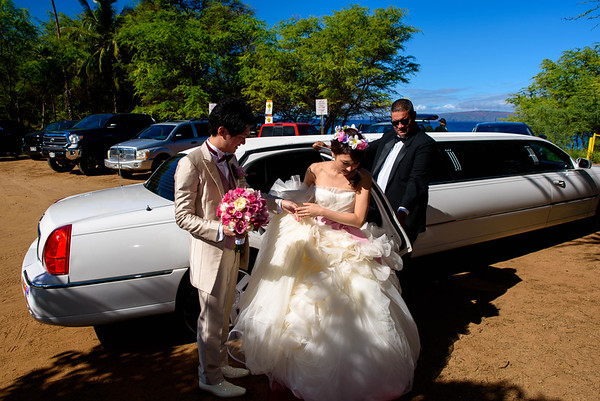 UNEDITED Takeshita Wedding, July 17, 2016, Four Seasons Maui, Hawaii