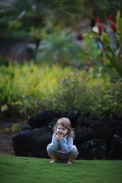Kauai_D2_AM 036.jpg