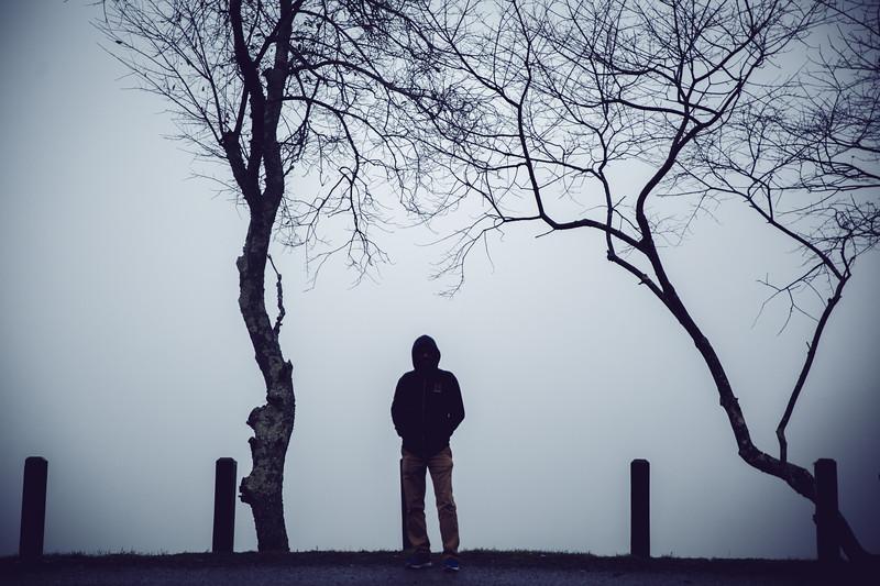 Flickr - BhanuCPS Album (Main)