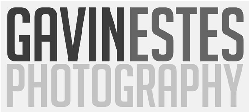 Gavin-Watermark-white.jpg