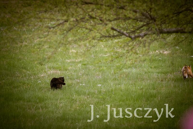 Jusczyk2021-6210.jpg