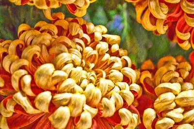 FLOWERS & FLORA ART