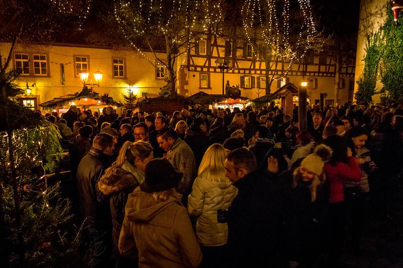 Screaming Slugs in Tauberbischofsheim