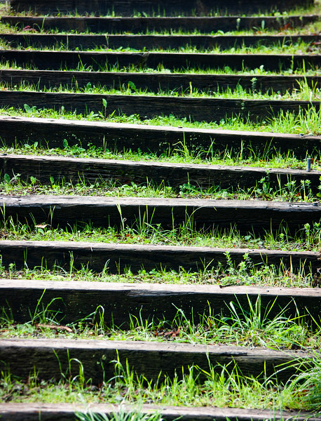 Steps, Lexington Reservoir, Santa Clara County, California, 2006