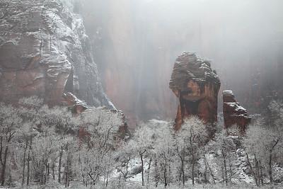 Zion: Grand Scenics