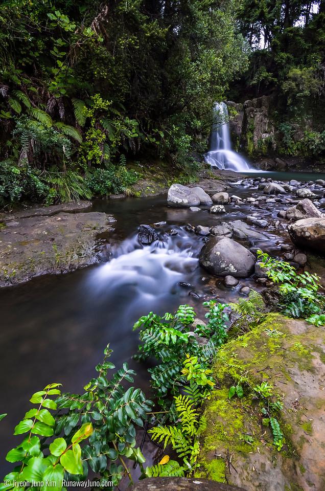 Waiau Falls of Coromandel Peninsula, New Zealand. It was great to be back in New Zealand again.