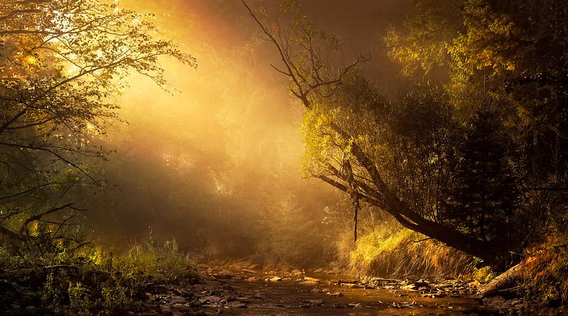 The Magic of Light-137.jpg