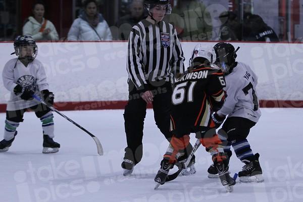 G3-Anaheim Lady Ducks vs SDIA Oilers White