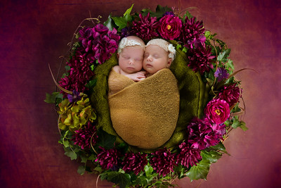 2017 | Eleanor & Anneliese, 1 month old