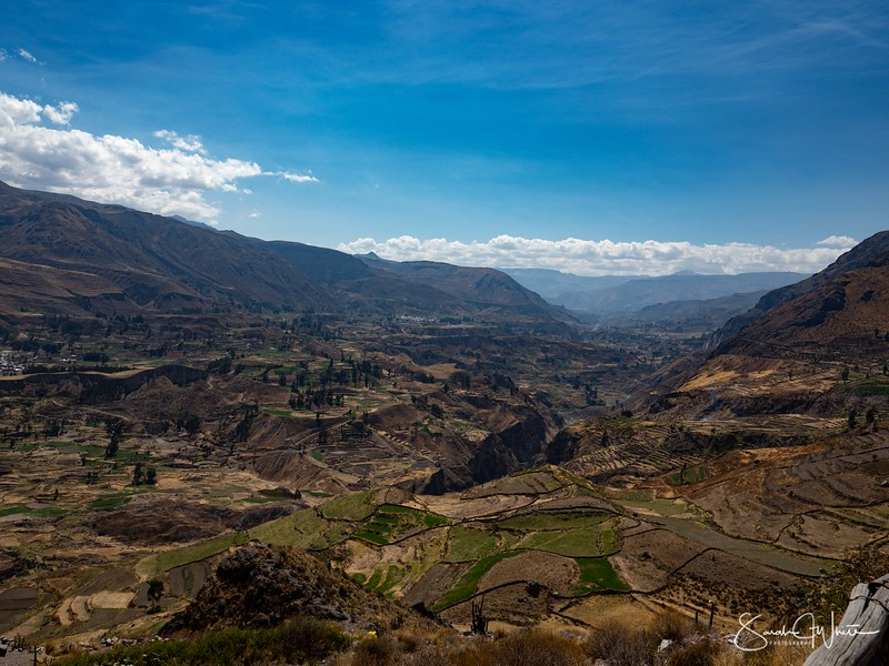 Peru-15102019-634.jpg