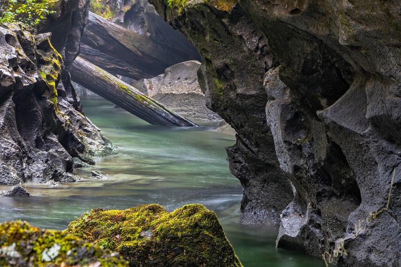 Little Huson Regional Park, Northern Vncouver Island, British Columbia, Canada.