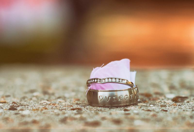 Houston-Santos-Wedding-Photo-Portales-Photography-17.jpg