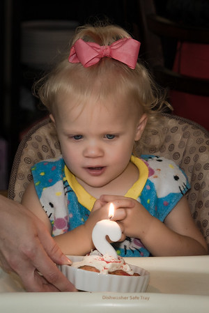 Sophie's 2nd Birthday