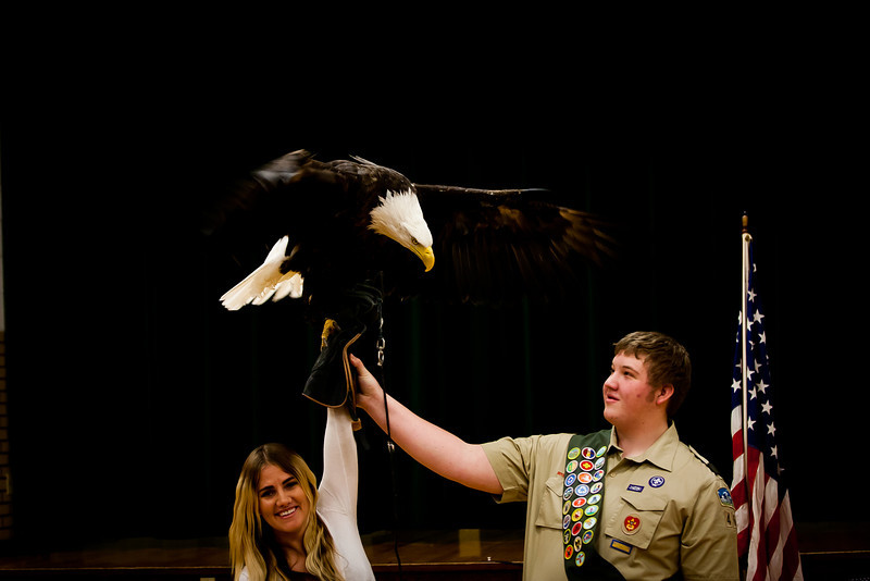 martin eagle-39.jpg