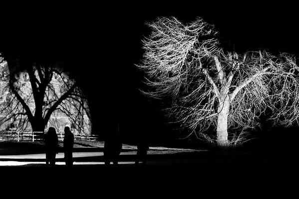 Lichtprojekt Siegrun Appelt