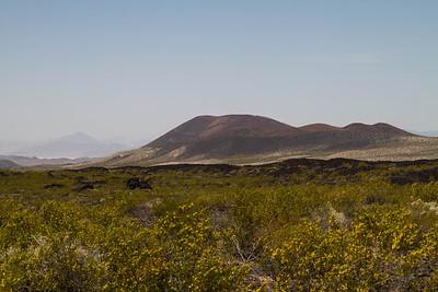 Arizona and California 2013