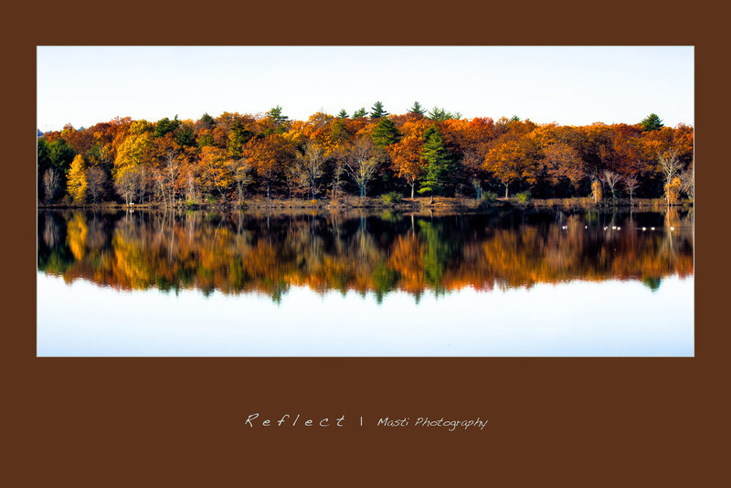 Reflect-4.jpg