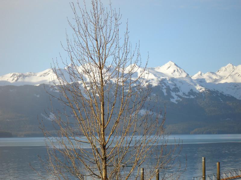 Alaska 2008 199.jpg