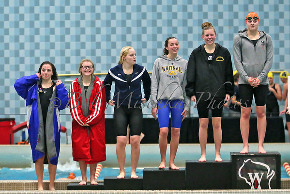 11/11/16 State Swimming Championships