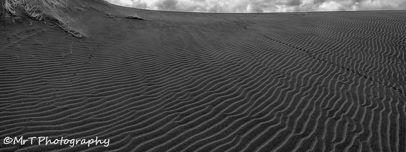 Sand ripples across the sand dunes Lake Wainamu Reserve Bethells