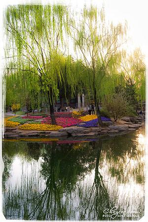 Beijing 2012 - ZHONGSHAN PARK