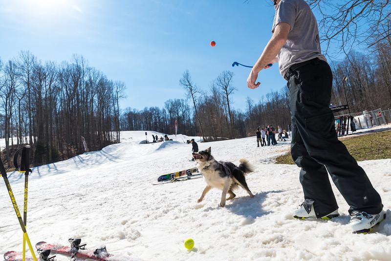 Backyard-BBQ-The-Woods-16-17_Snow-Trails-Mansfield-Ohio-1245.jpg