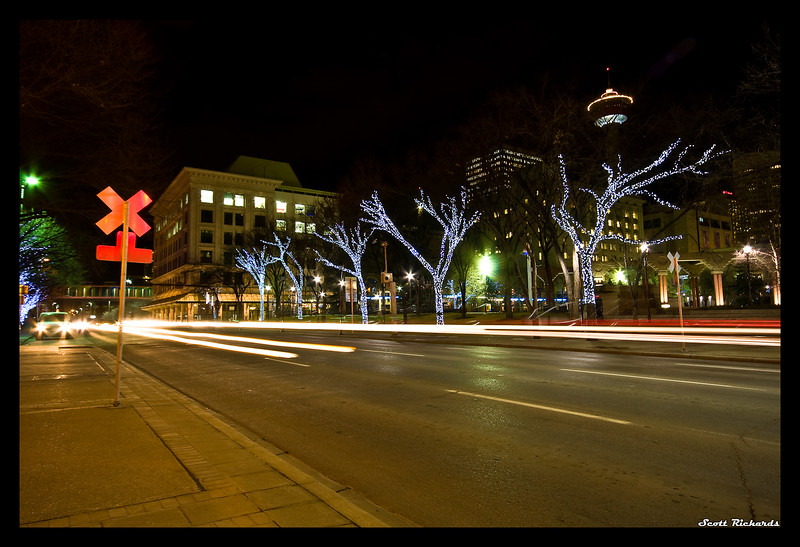 Boulevard of Electric Trees