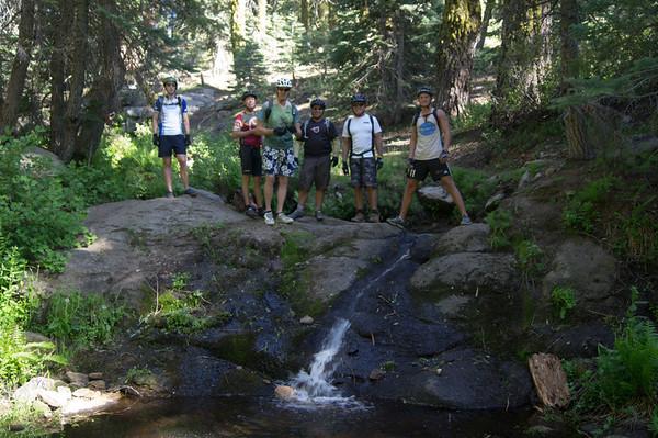 2012-06-21 - Quaking Aspen