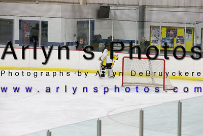 Girls Hockey vs Fergus Falls
