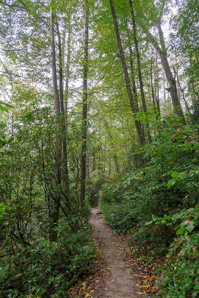 Cat Gap Loop Trail -- 2,350'