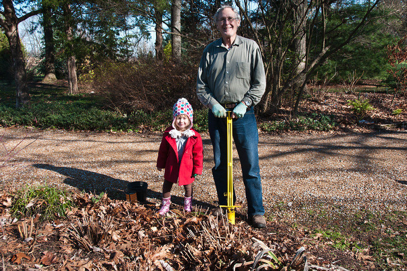 Papa asks Thalia if she wants to help him plant bulbs
