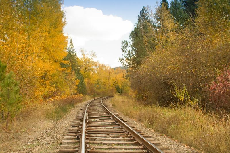 fall 2015-7263.jpg