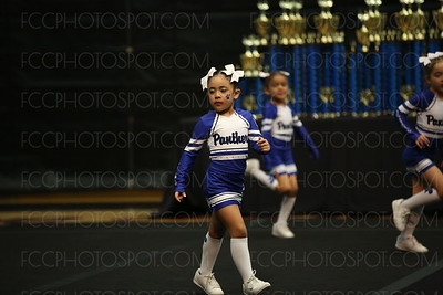 Center Pointe Purrfect Panthers 2&<