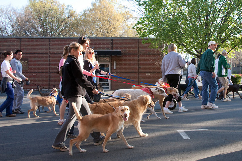 Dogswalk_RLoken_033_3169