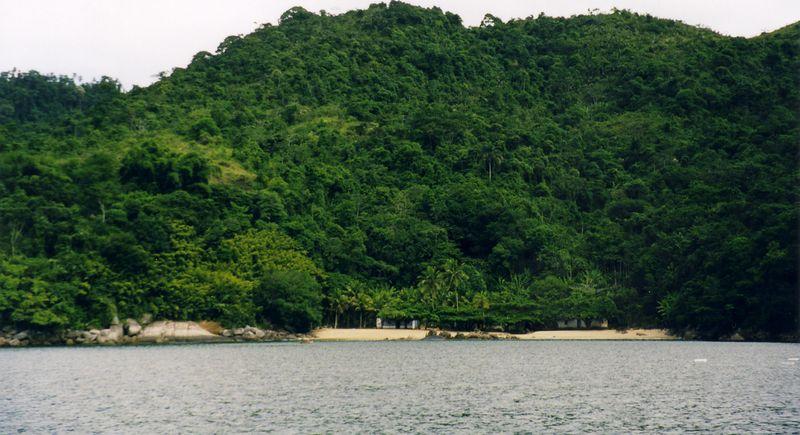 jungle_beach.jpg