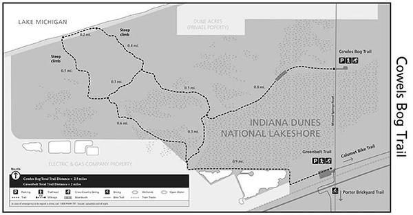 Indiana Dunes National Park (Cowles Bog Trail)