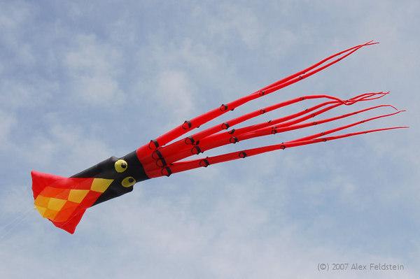 Kite Store -  Haulover - Miami