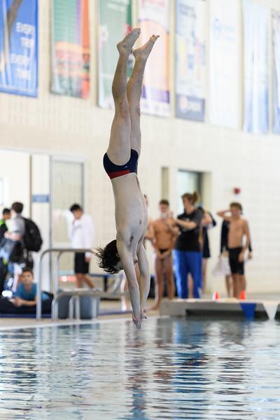 KSMetz_2017Nov29_SHS Swimming8460.jpg