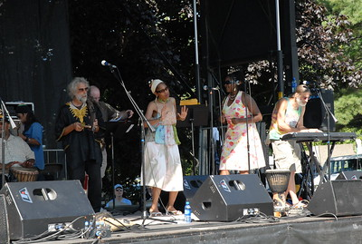 2010 Erie Art Museum Blues Festival