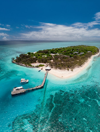 11 Amazing things to do on Heron Island!