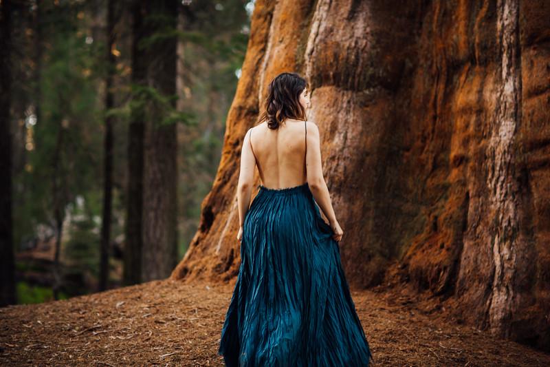 Eya Winters Sequoia Shoot-287-6231.jpg