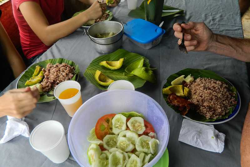 Lunch after a hard hike to the waterfalls near Silico Creek, Panama.