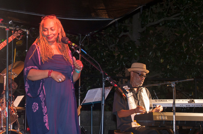 Jazz Matters at Wrens Nest 123.jpg